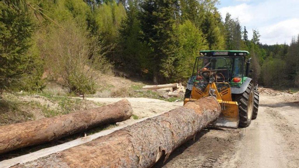 Ťažba a výkup dreva